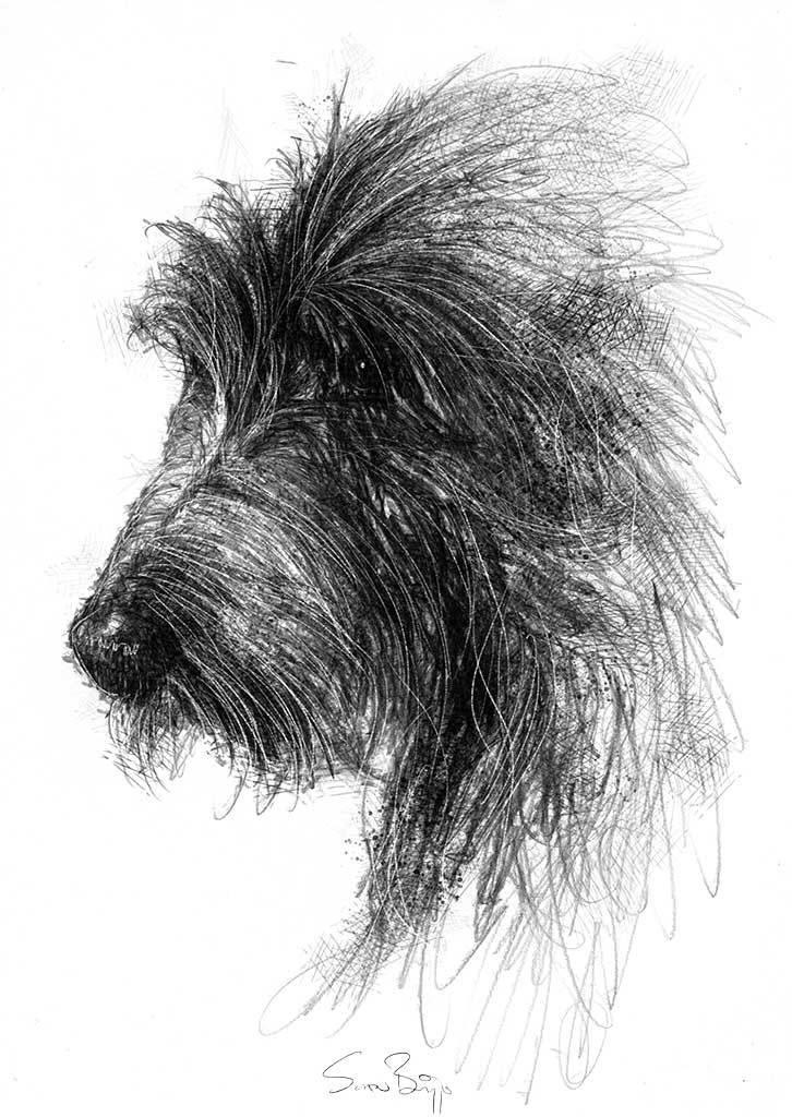Sketch My Dog Art