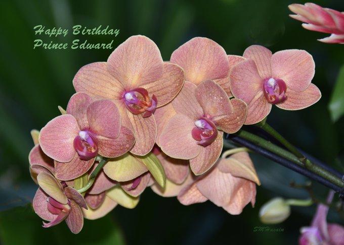 Happy Birthday HRH Prince Edward! princess of Wales Conservatory, Royal Botanic Gardens, Kew, Greater London.