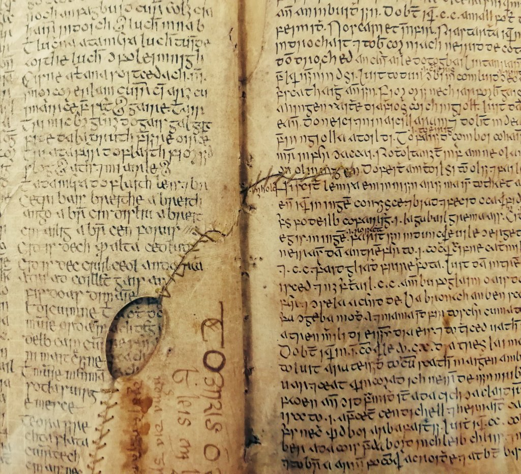 My heartfelt thanks to everyone who helped to make the 4th Irish Manuscripts Conference on #23N10 The Book of Ballycummin such a great success. A fantastic collaboration between @Library_RIA @EarlyIrishMU & @SCSLibrary. The next conference, in 2021, will be on the Leabhar Breac!