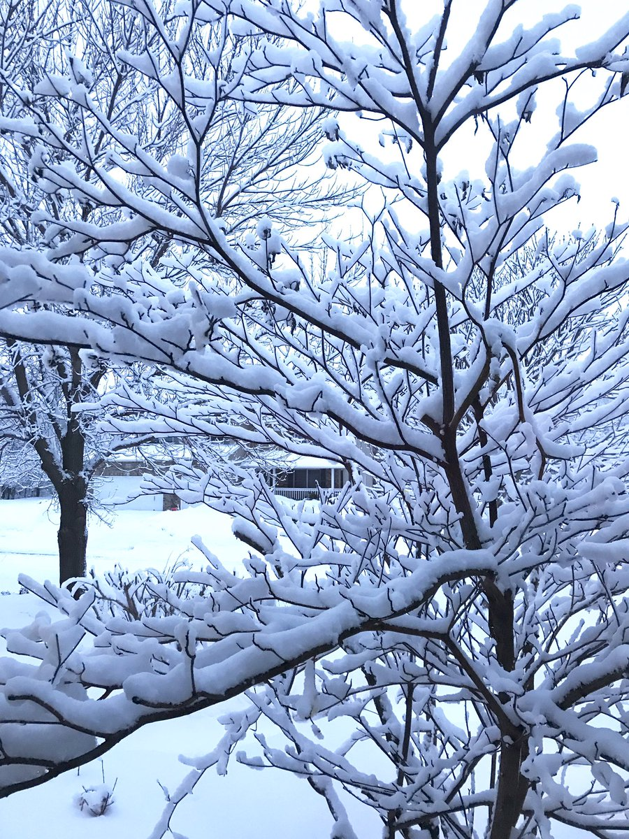 Lanae's photo on #snow