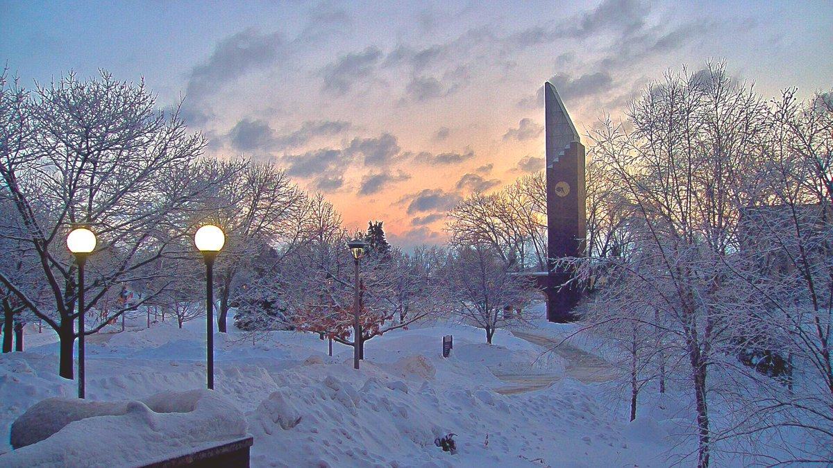 Mark Tarello's photo on #snow
