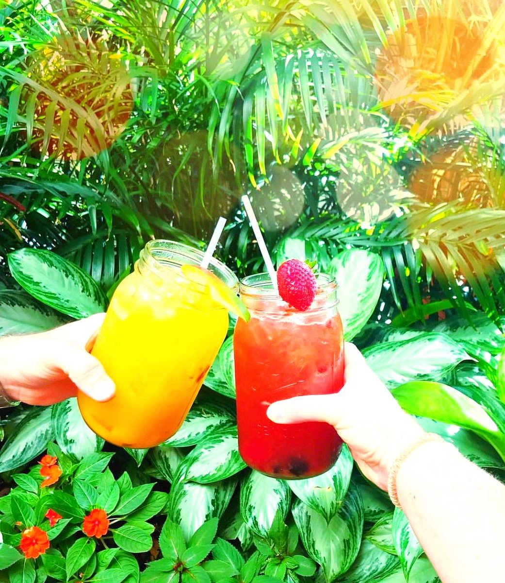 Cheers to Sunday Brunch 😘🍹 #Sunday #SundayBrunch #SundayFunday #weekend #PeacockGardenBistro  #Miami #CoralGables #CoconutGrove