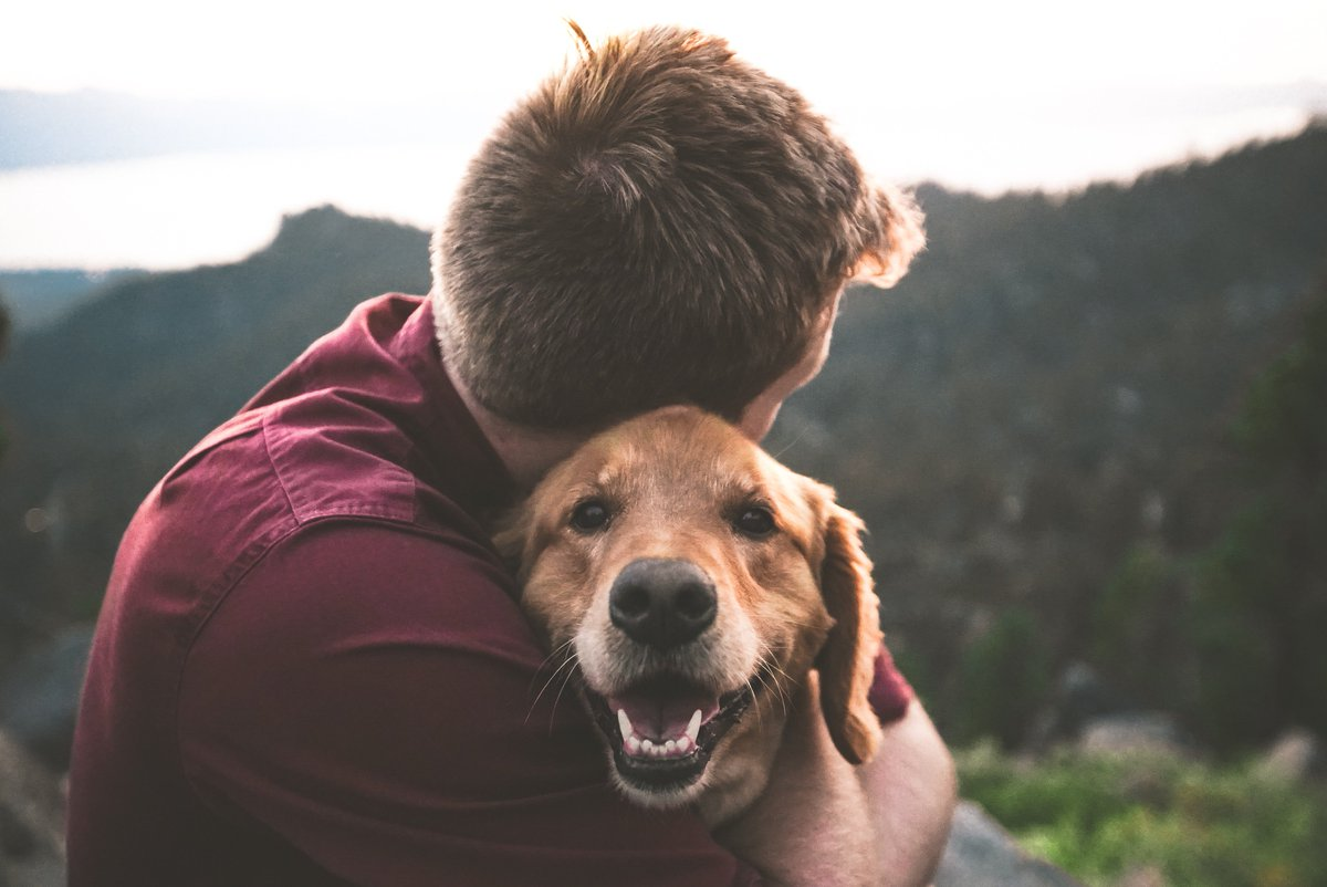 Love your pet day should be every day! Even if your day is busy, there is nothing better than spending time with your best friend when you get back home! #loveyourpetday #bestfriend #dogsoftwitter  #networkforanimals<br>http://pic.twitter.com/zQIks7zGeW