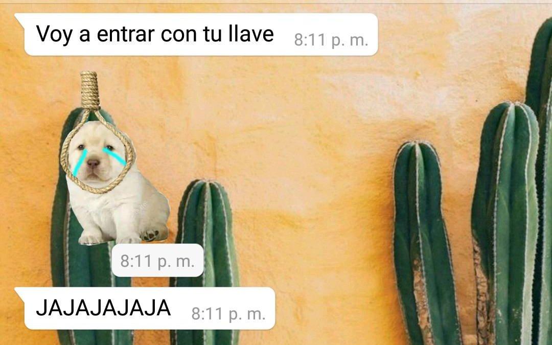 ⒶⒷⒾⒾ's photo on Alcaraz