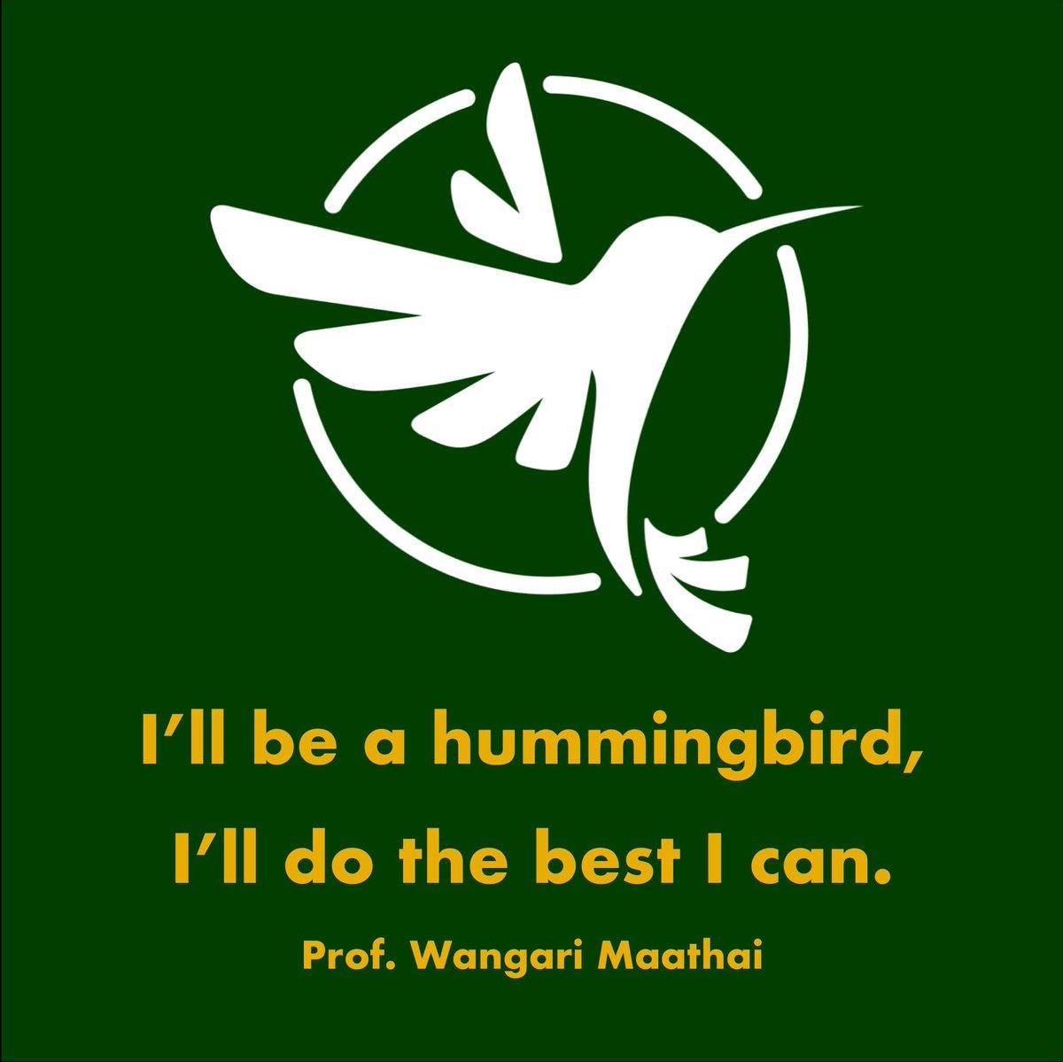'...I will do the best I can.' #IAmAHummingbird