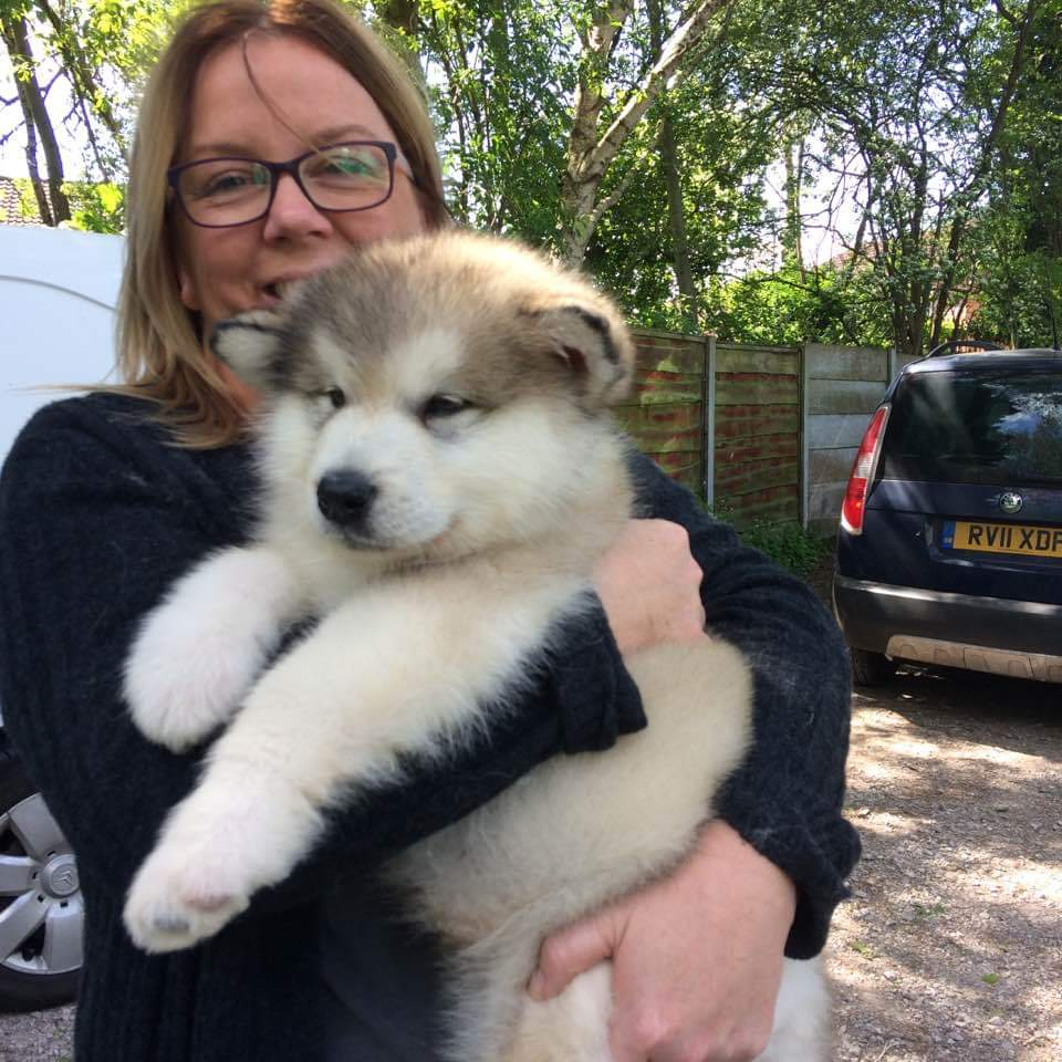 This was our baby fella at 8 weeks old!!!