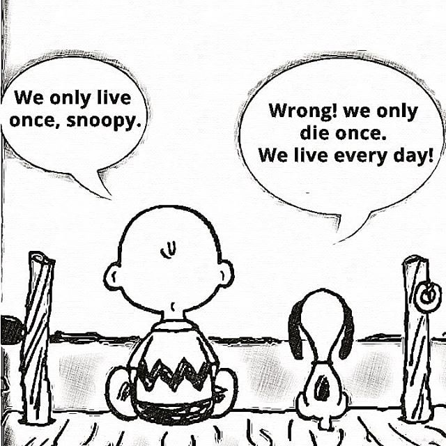 - We only live once, Snoopy. - Wrong! We only die once. We live every day! . . . .  #actitudpositiva #positivenergy #positives #positivevibesalways #ilusion #cometeelmundo #eatingtheworld #lovethelife #phd #phdlife #scientist #lab2business #innovationsee…  https:// ift.tt/2J3Wft7  &nbsp;  <br>http://pic.twitter.com/nL59mp0sIE