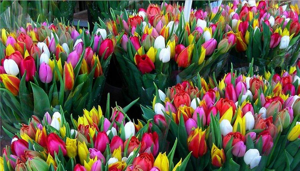 Где купить цветы на 8 марта в москве, доставкой 101 роза