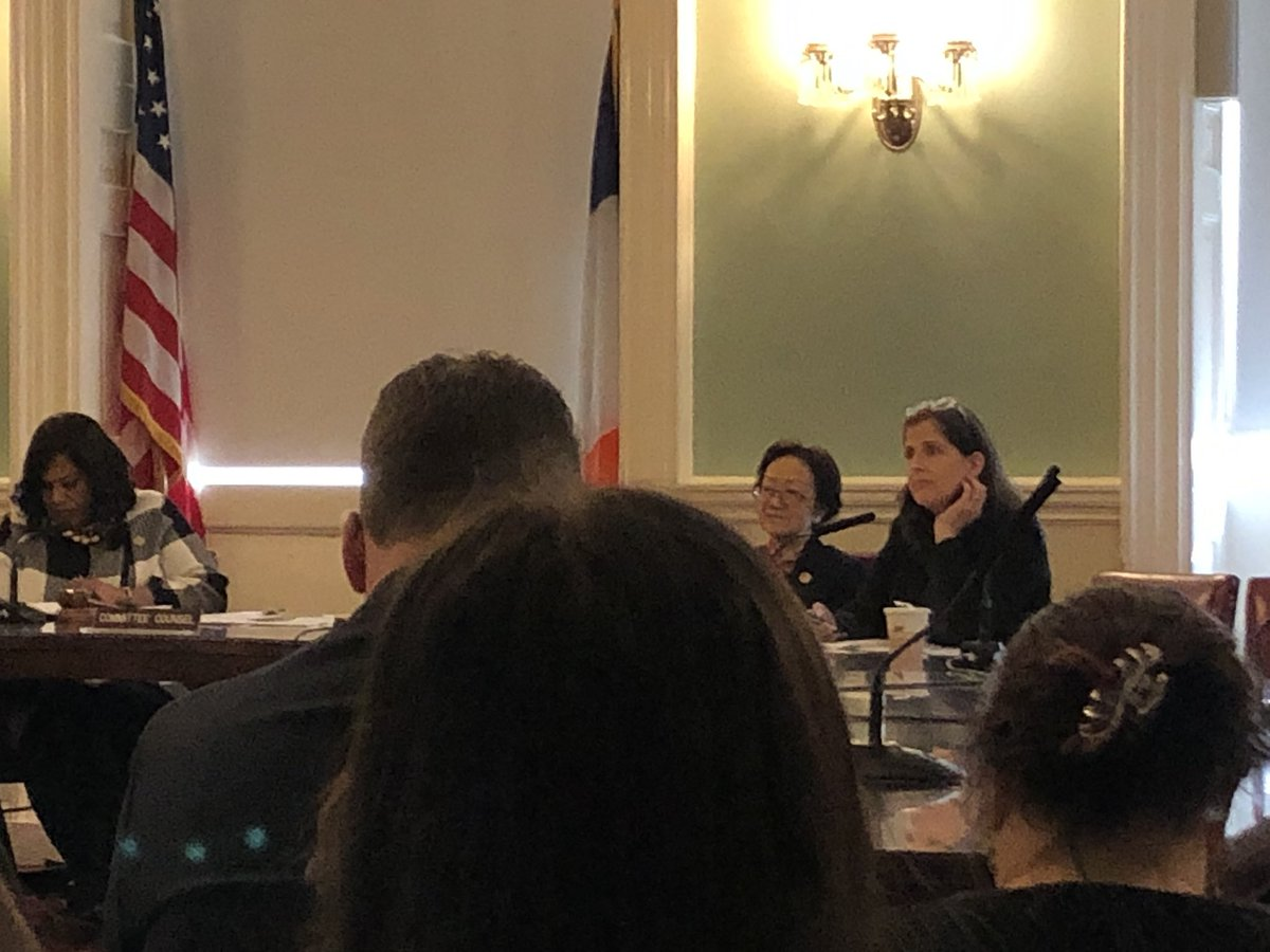 Thank you CM  @HelenRosenthal on asking important questions about the impact of having a newgender equity liaison at DYCD  @NYCCouncil @NYCYouth #STARSCGI