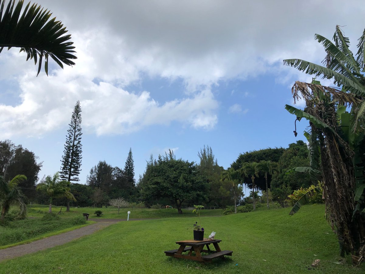 test Twitter Media - Mostly cloudy in Haiku. #cmweather #Maui https://t.co/19Z1xbiahN