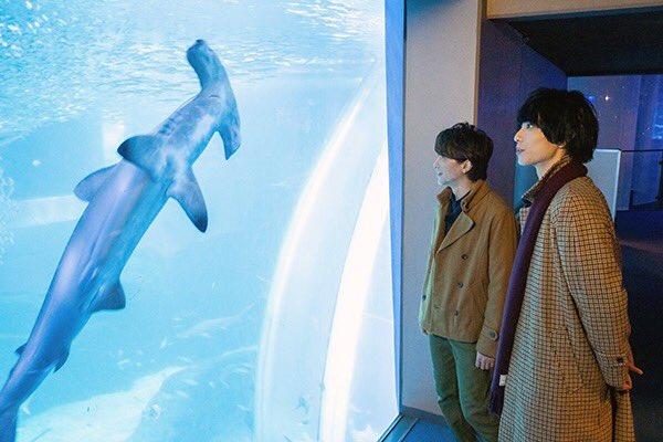 【第6回は3/29放送!】八景島シーパラダイスにはとても大きい水槽があります鈴木さん黒羽さんも圧倒さ