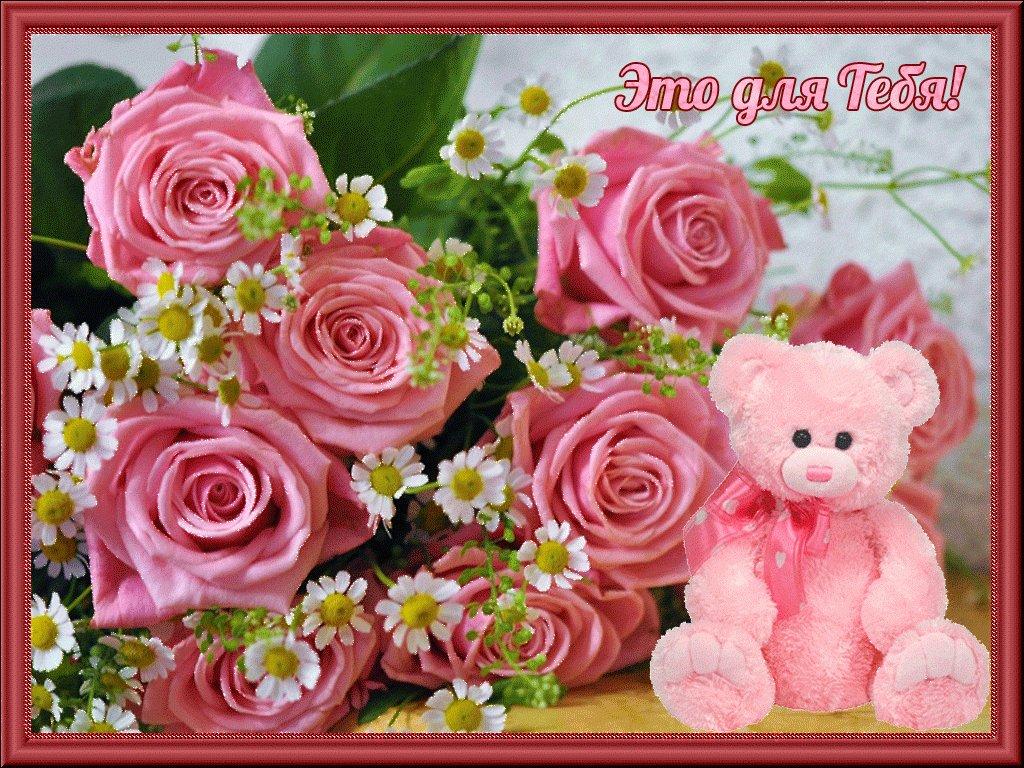 Дню учителя, плейкаст с днем рождения цветы открытки