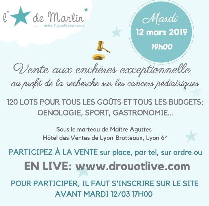 db6311b1934 Jour J pour la vente caritative exceptionnelle  Aguttes   CAguttes au  profit de l Etoile de Martin! Participez sur place ou en live en vous  inscrivant sur ...