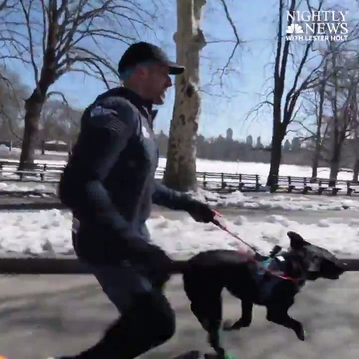"""Thomas Panek will be the 1st blind runner to complete a half-marathon with the help of guide dogs, including his own.  He hopes """"it's the first of many races for people who are blind to participate in, just like everybody else.""""  @KristenDahlgren has his story on @NBCNightlyNews."""