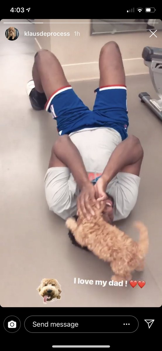 Joel Embiid and his new dog Klaus Hinkie de Paula Embiid might be the best thing on the internet🥰 @JoelEmbiid