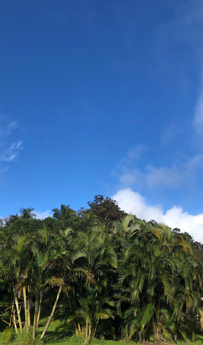 test Twitter Media - Cooling down and skies clearing on the north shore. #cmweather #Maui https://t.co/eyVaw3ctAD