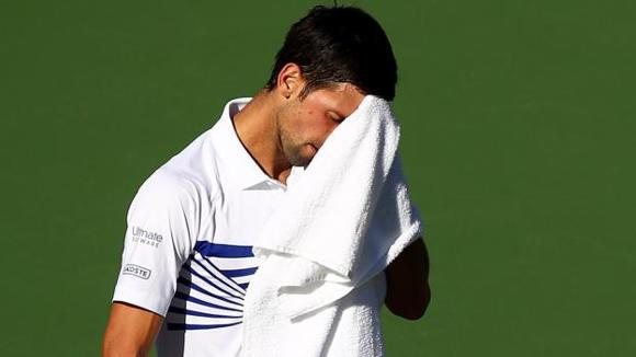 vikash sr's photo on Djokovic