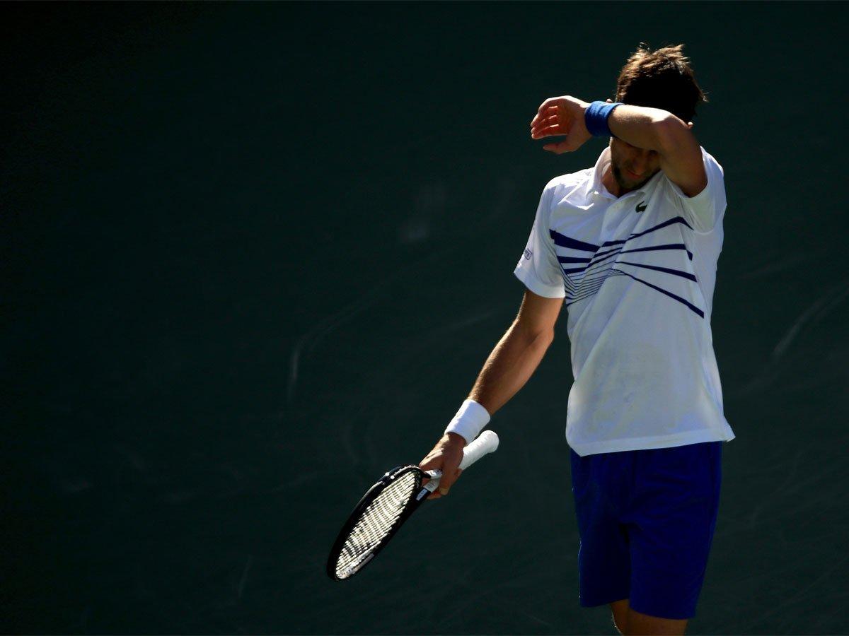 TOI Sports's photo on Djokovic