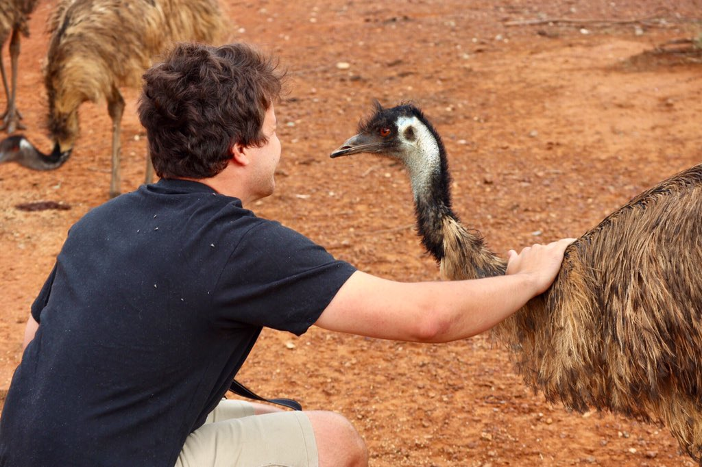 Emu-sing conversations with an old friend. Thank you @BindiIrwin for capturing this special moment.