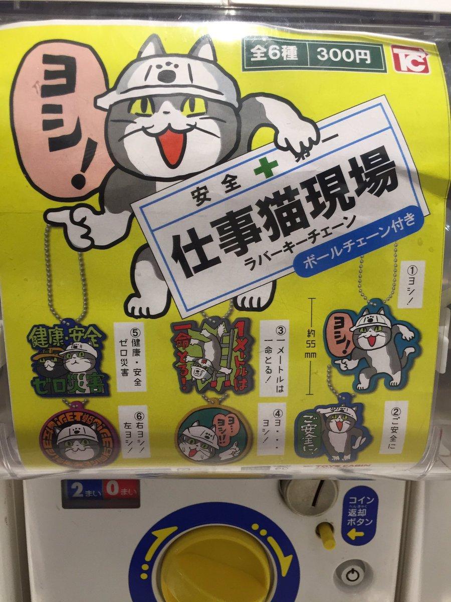 猫 グッズ 現場