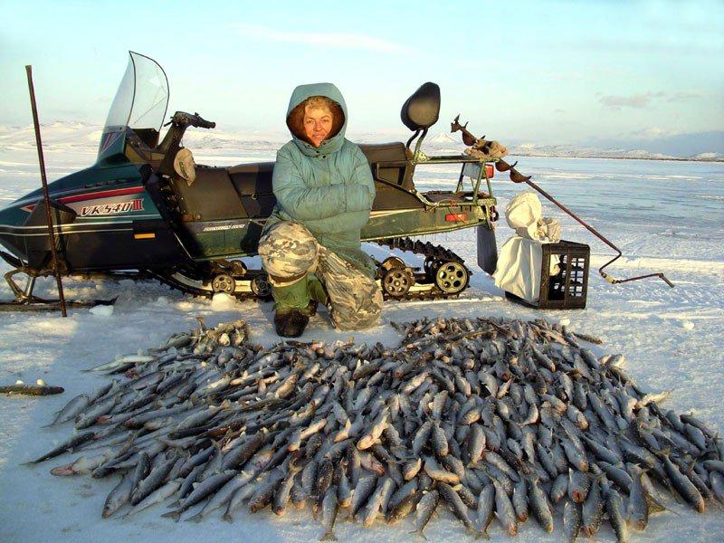 Подледная рыбалка корюшка