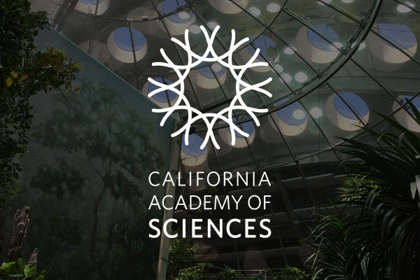 Did you know all #MissionCityFCU members receive discounts for the #CaliforniaAcademyofSciences?   For more information and ticket prices, visit our website: https://missioncityfcu.org/member-discounts/#calacademy…pic.twitter.com/YrASggelSh