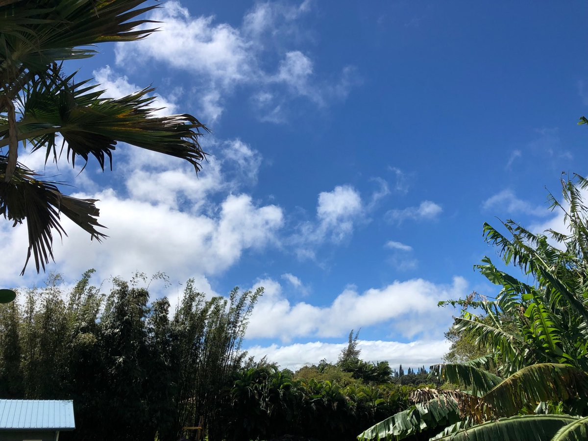 test Twitter Media - Beautiful warm day on the north shore. #cmweather #Maui https://t.co/W8uHzfEeap