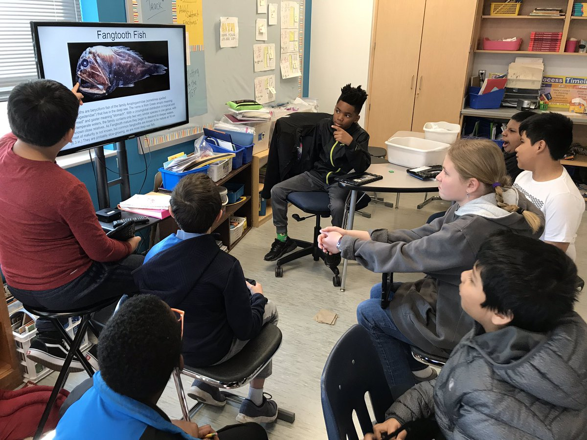 Ss took great pride in presenting their Ocean Zone learning in class today... and I'm pretty proud too! They revealed amazing facts about some really cool fish regarding adaptations and their place in the food chain <a target='_blank' href='http://twitter.com/AbingdonGIFT'>@AbingdonGIFT</a> <a target='_blank' href='http://twitter.com/MsEllisclass'>@MsEllisclass</a> <a target='_blank' href='http://search.twitter.com/search?q=abdrocks'><a target='_blank' href='https://twitter.com/hashtag/abdrocks?src=hash'>#abdrocks</a></a> <a target='_blank' href='https://t.co/eP05FmNmLy'>https://t.co/eP05FmNmLy</a>