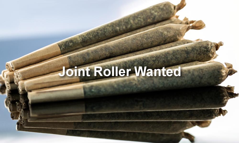 大麻店招聘专业捲烟员 每小时100元工资