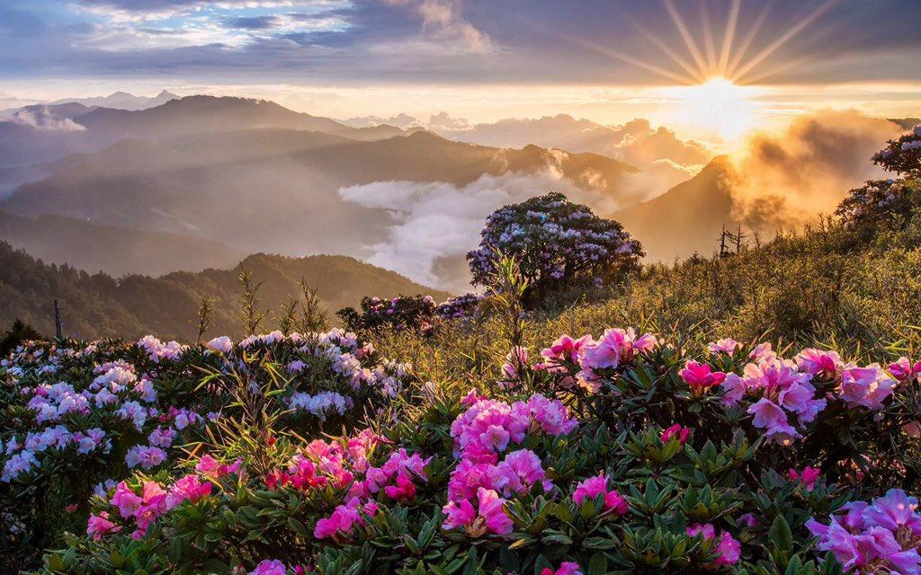 #صباح_الخير  إنّ دُورْ الجَنّةَ تُبْنىَ بِالذّكِرْ ،، فَإذَا أَمْسَكَ الذّاكِرْ عَنِ الذّكِرْ ، أَمْسَكَتْ المَلائِكَةَ عَنْ البِنَاءْ ،، سبحان الله،، والحمد لله،، ولا اله الا الله،، والله واكبر🍁