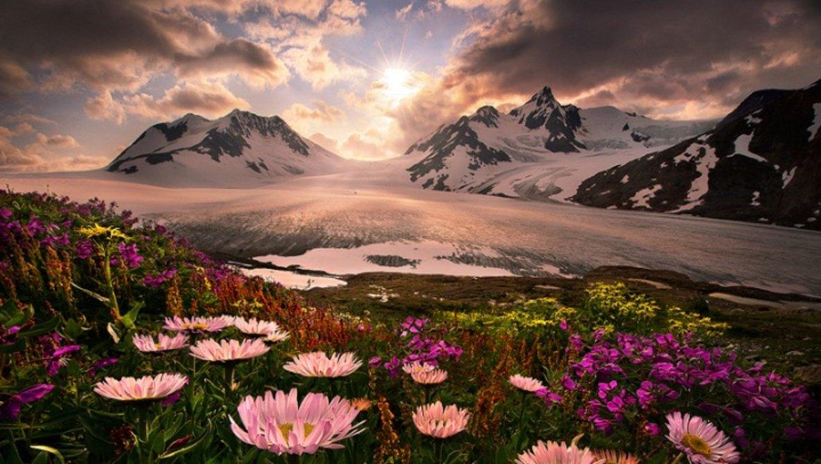 #صباح_الخير  في قلب كل انسان نبتة صالحة ؛ إن سقاها بالخير تفرّعت و صنعت له بستاناً ، وإن سقاها بالشر فسدت و أفسدت أرضه 🍁