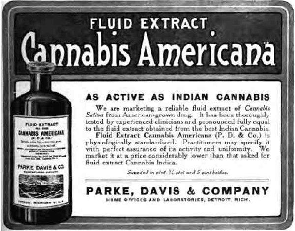 70年代开始已经有研究证明大麻可以杀死癌细胞