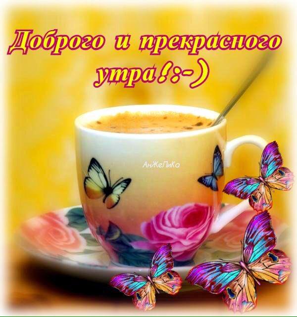 Всем доброго утра и хорошего настроения на весь день прикольные картинки