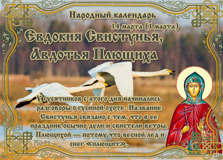 Картинка евдокия плющиха