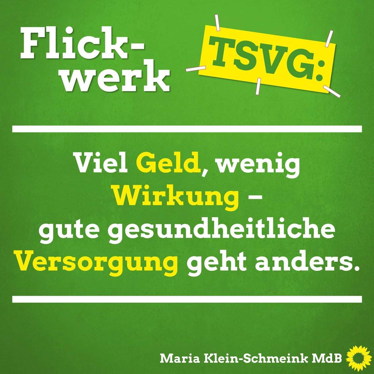 Maria Klein-Schmeink's photo on #TSVG