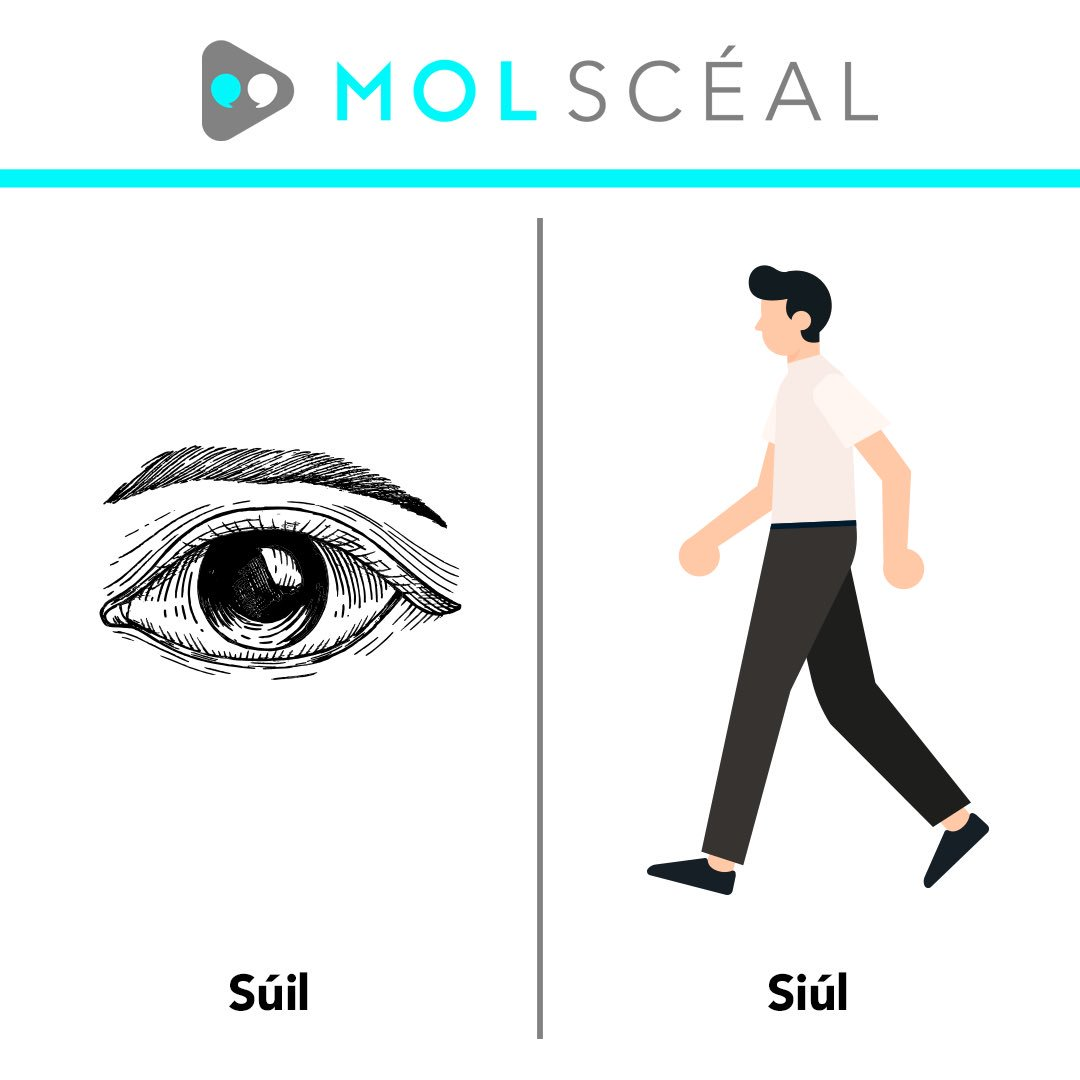 Ní mar a chéile iad  Súil - Eye 👁 Siúl - Walk 🚶♀️  #nímarachéileiad #molscéal