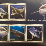 Image for the Tweet beginning: #SharksNearMe Canadian shark stamps, a