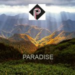 Image for the Tweet beginning: ⚡Paradise Token [PDT]⚡ - 💰✈️The