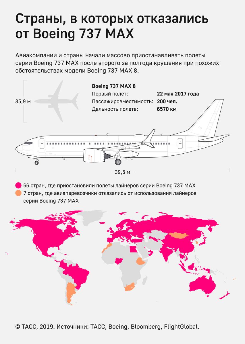 какие авиакомпании разрешают провоз животных в салоне