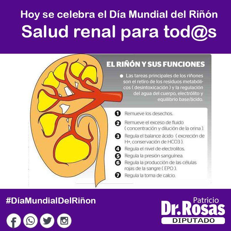 DiputadoPatricioRosas's photo on #DíaMundialDelRiñón