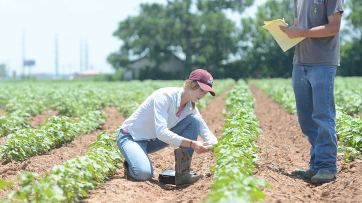 Farmers Fight!   Thank you to our Aggie farmers &amp; scientists working in fields, labs, &amp; classrooms to provide for others.  #NationalAgDay <br>http://pic.twitter.com/9VigtIE7AU