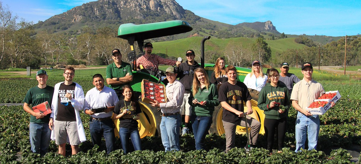 Did you know California is the leading state for food production, accounting for over 13% of the nation&#39;s total agricultural value? CSU campuses are hard at work training the next generation of engineers, scientists and ecologists to power California. #NationalAgDay <br>http://pic.twitter.com/BfUJ3p6sGE