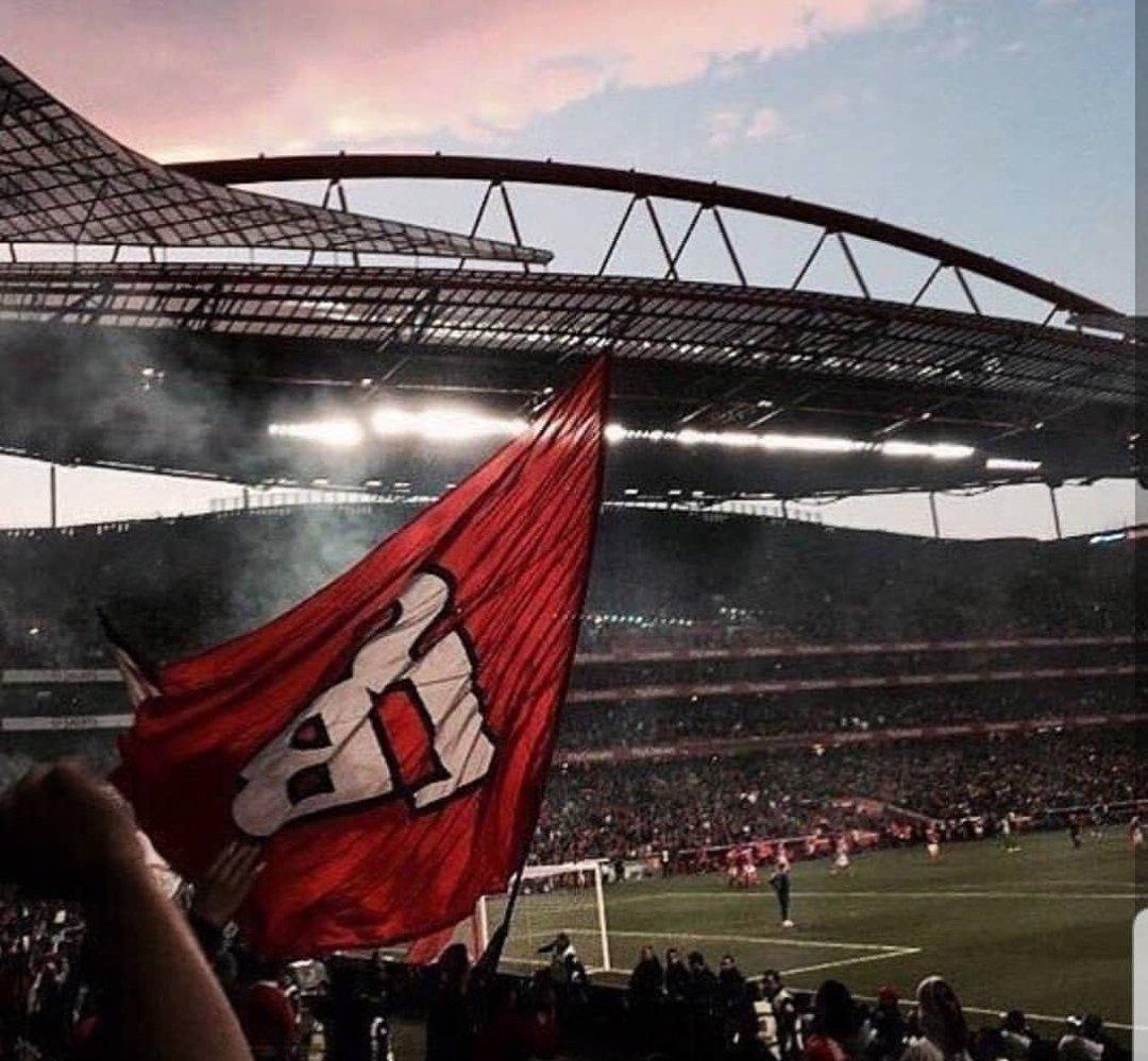 Adeptos do Benfica's photo on Benfica