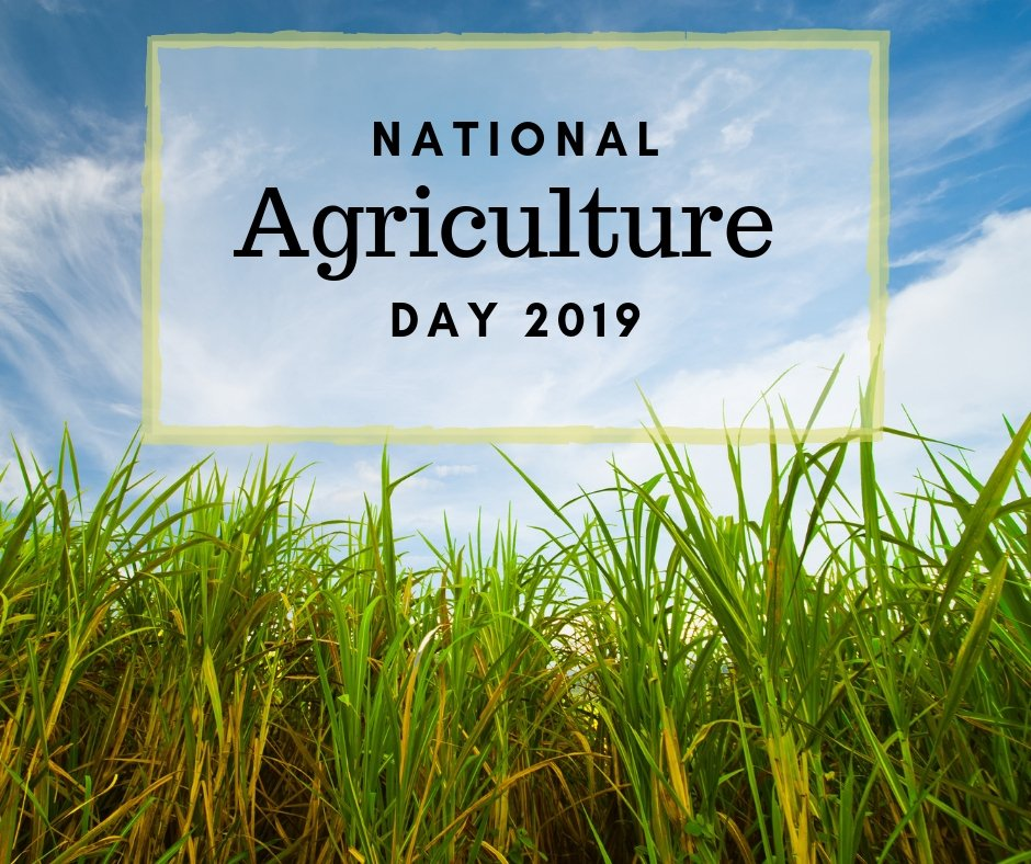 Louisiana farmers and ranchers are stewards of the earth and producers of high quality food. Today we celebrate #NationalAgDay, and I want to thank the men and women in agriculture who work from dawn to dusk growing food for a hungry world. <br>http://pic.twitter.com/XiT5hJrweH