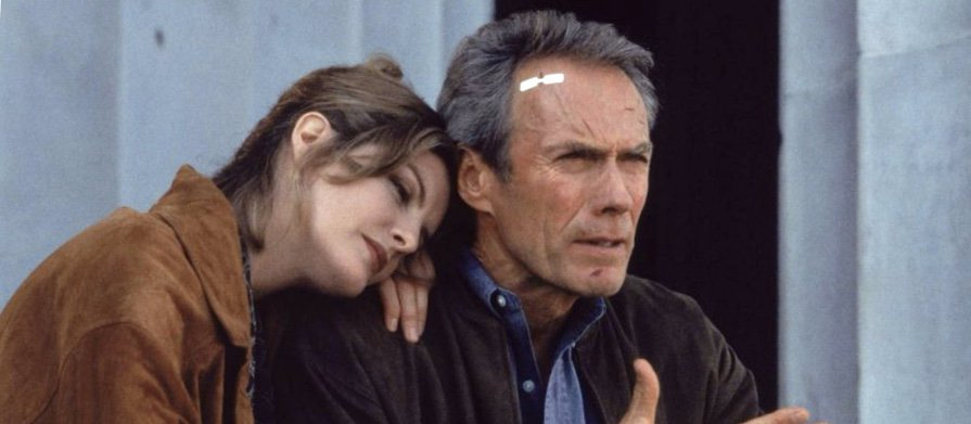 I know things about pigeons, Lily  #MovieQuotes #ClintEastwood #ReneRusso <br>http://pic.twitter.com/mS0CfbHUaL