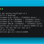 Image for the Tweet beginning: 🎉 Go 1.12.1 and 1.11.6