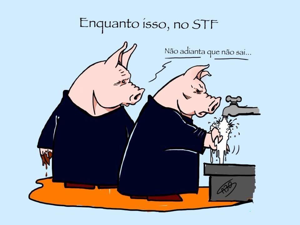 Tato Sabo's photo on #STFVegonhaNacional