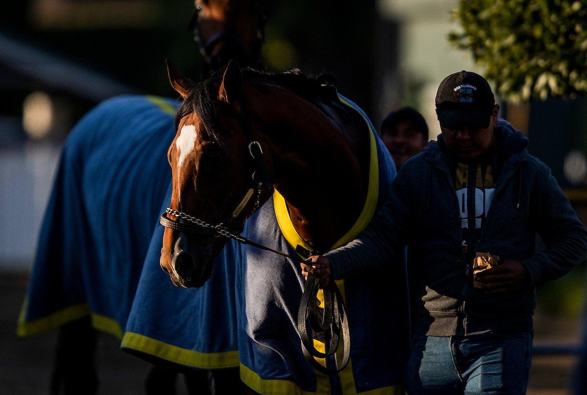 Horse Racing Nation's photo on Lasix