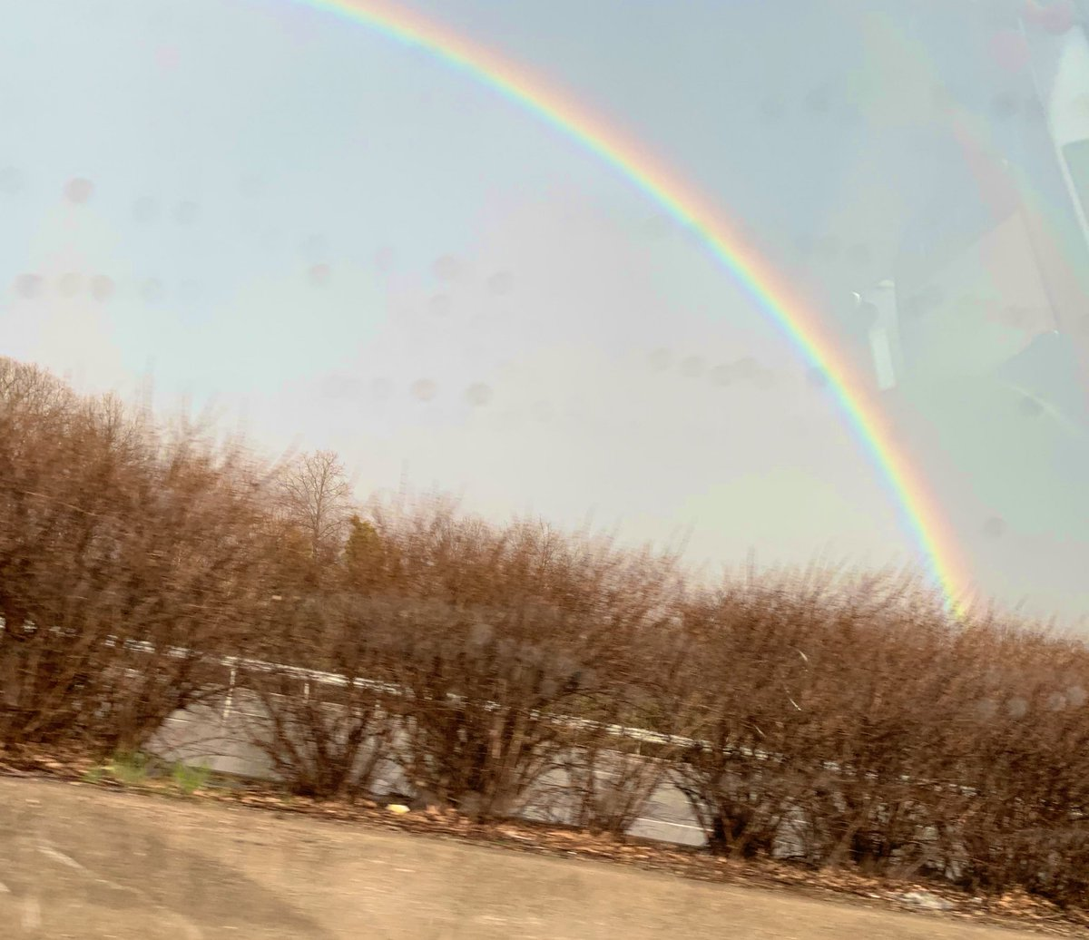 Janaki's photo on #rainbow