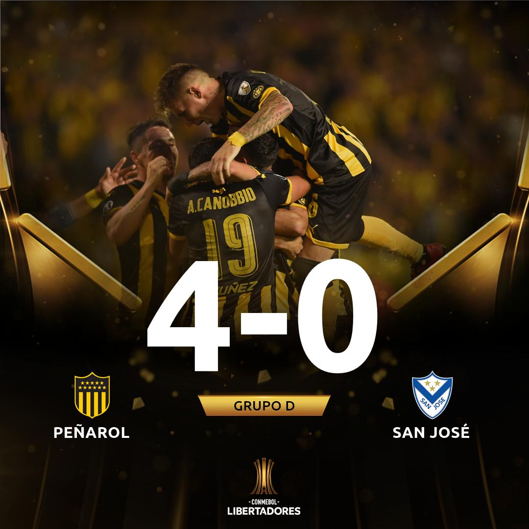 CONMEBOL Libertadores's photo on Viatri